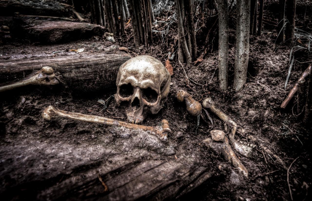 Skelett i skogen